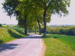 Parcours_la_panoramique_095